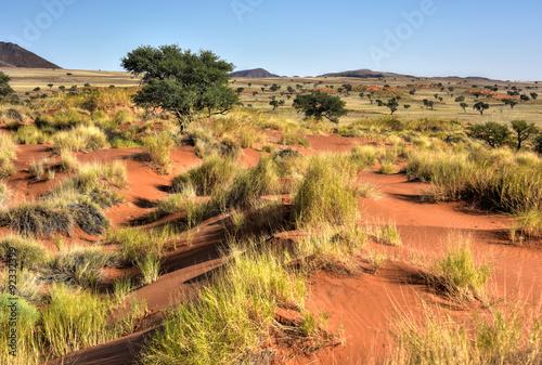 Papiers peints Orange eclat Desert Landscape - NamibRand, Namibia