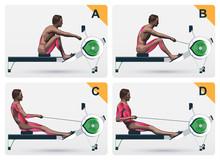 Muscle Work On Rowing Macine