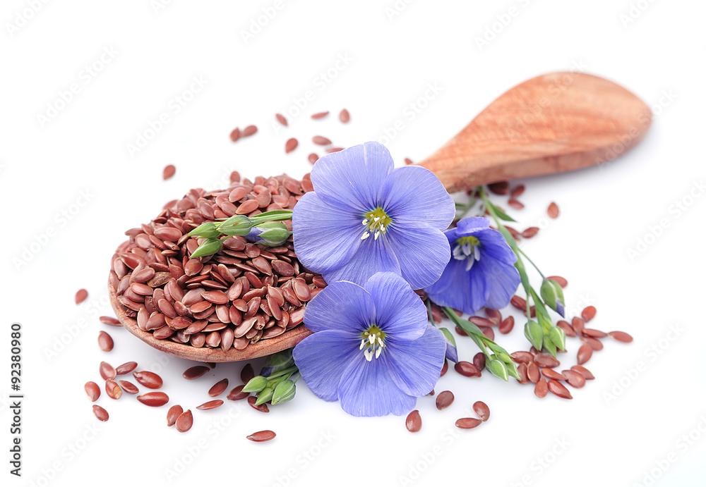Fototapety, obrazy: Flax seeds
