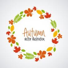 Autum Season