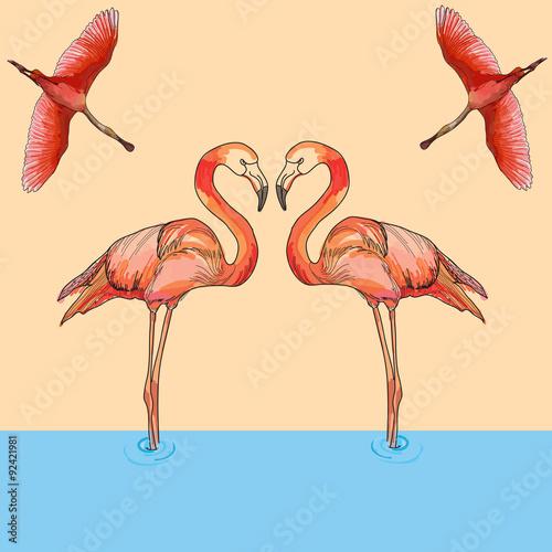 Photo sur Plexiglas Illustration of Flamingos in flight and water