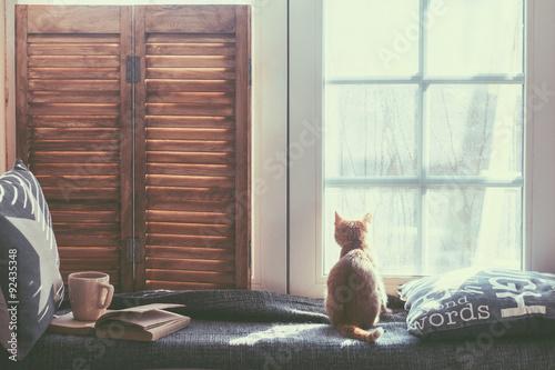 Fényképezés  Window seat