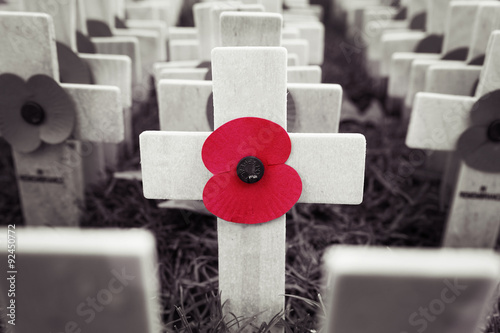 Poppy Cross, Remembrance day display #92450772