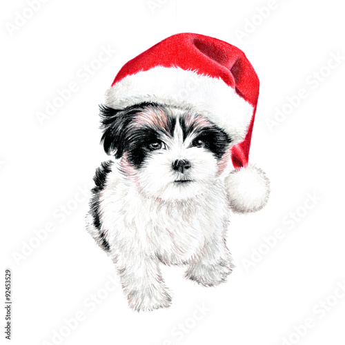 hand drawn puppy dog with santa claus hat cute fun christmas card clipart sketch