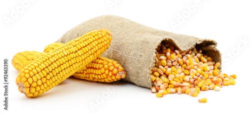 Fotografía  Bag of corn kernels.