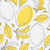 Outline seamless pattern with hand drawn lemon and leaves. Doodle fruit for package or kitchen design - 92485973