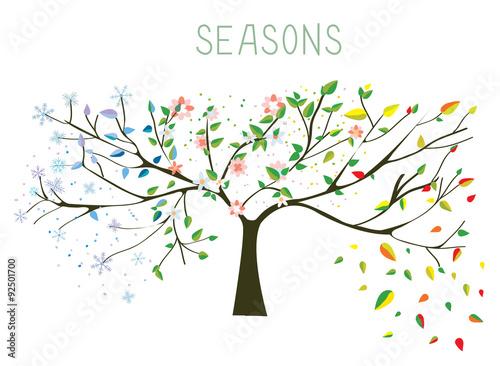 Carta da parati Tree during four seasons concept