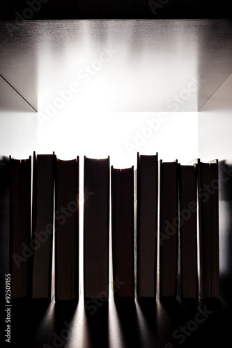 Silhouette of several books on the bookshelf Poster