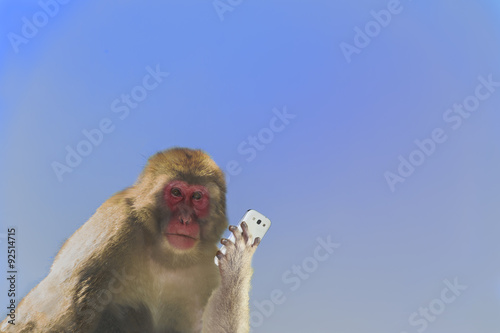 Fotobehang Aap スマートフォンを持つ日本猿