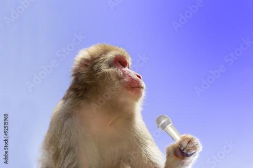 Foto op Plexiglas Aap マイクを握る日本猿