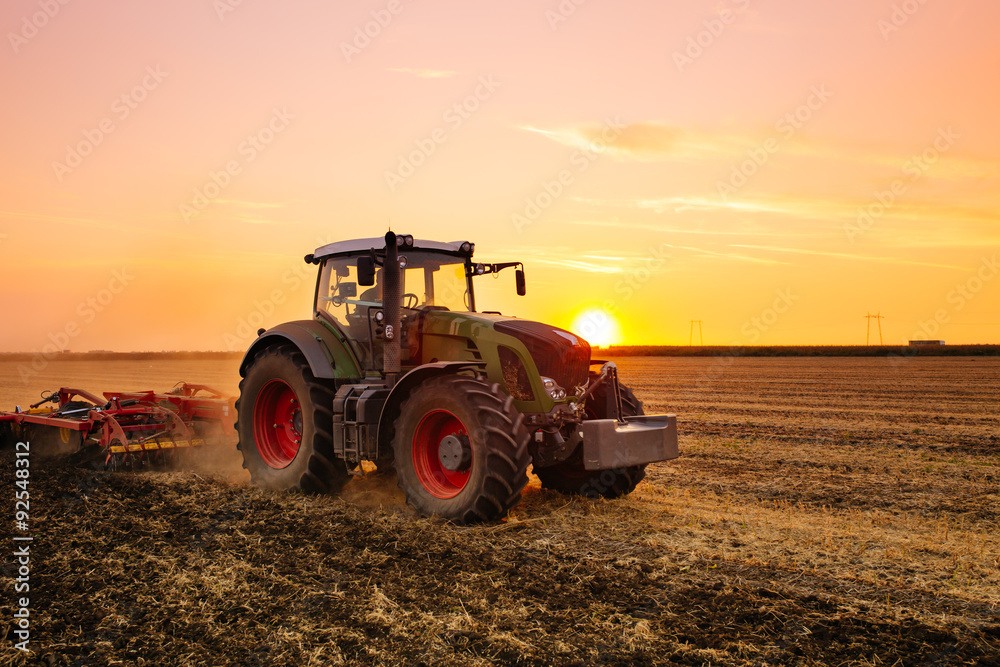 Fototapeta Tractor on the barley field by sunset.