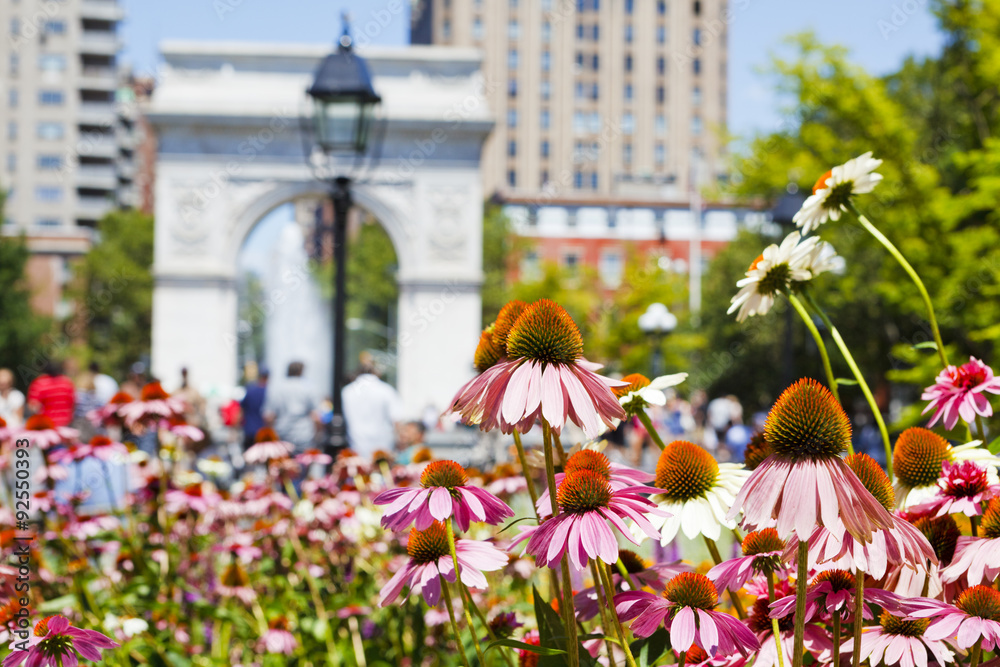 Fototapety, obrazy: Washington Square Park in July. The focus is on flowers in the foreground with Washington Square Arch and park-goers out of focus in the background.