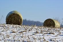 Winter Corn Field Hay Bales Ro...