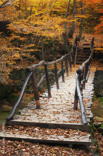 drewniany-most-w-lesie-jesienia
