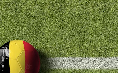 Belgium Ball in a Soccer field Wallpaper Mural