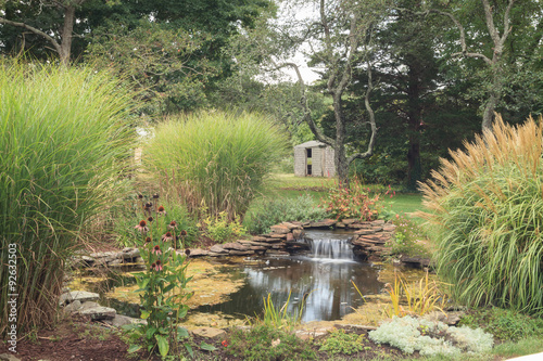 Fotografie, Obraz  Plant life and a waterfall in a pond in New England on Cape Cod in summer