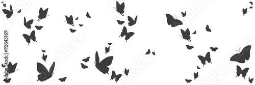 Silhouetten von Schmetterlingen #92643169