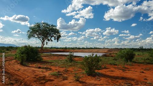 Photo sur Toile Bleu jean Wasserloch in Kenia