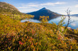 Beautiful vibrant summer norwegian landscape with coast of fjord with a blue sky, blue clear water, norway, norge