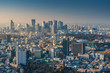 Skyline of Tokyo Cityscape at Sunset, Japan