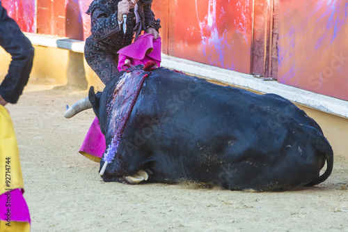 Foto op Canvas Stierenvechten El arte del toreo y la polémica del maltrato animal de los toros en la corrida
