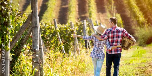 Wall Murals Vineyard Couple walking in between rows of vines