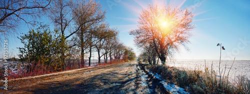 Rain and frost Slika na platnu