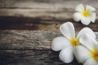 Wood background with Plumeria