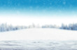 Leinwanddruck Bild - Winter snowy background