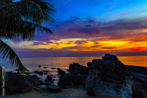 Sunset palm trees caraibe sea Canvas Print