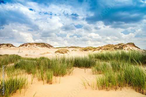 wydmy-przy-morzu-baltyckim