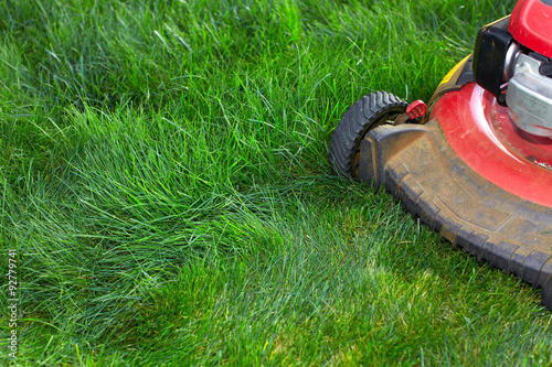 Papiers peints Jardin Lawn mower cutting green grass.