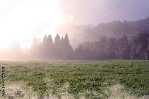 Foto auf Gartenposter Blau Bavarian landscape during a beautiful foggy morning