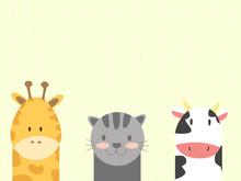 Animal Backgrounds