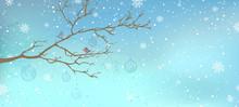 Winter Tree Background.