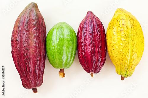 Carta da parati different sorts of colorful cocoa pods on white