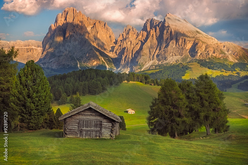 Seiser Alm with Langkofel group, South Tyrol, Dolomites, Italy Wallpaper Mural