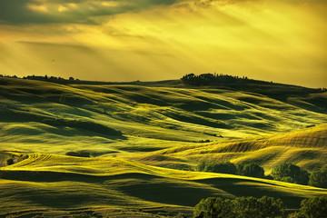Fototapeta Toskania Tuscany spring, rolling hills on sunset. Rural landscape. Green