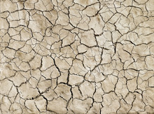 A Close Up Of Cracked Mud