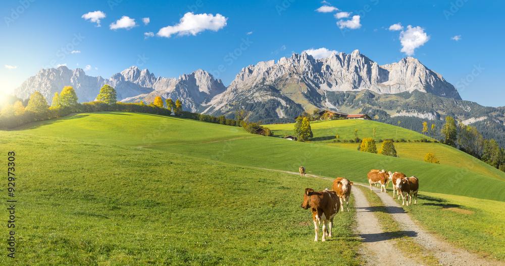 Fototapety, obrazy: Herbststimmung Wilder Kaiser Tirol