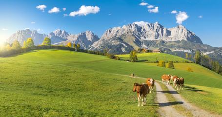 Obraz na Szkle Wiejski Herbststimmung Wilder Kaiser Tirol
