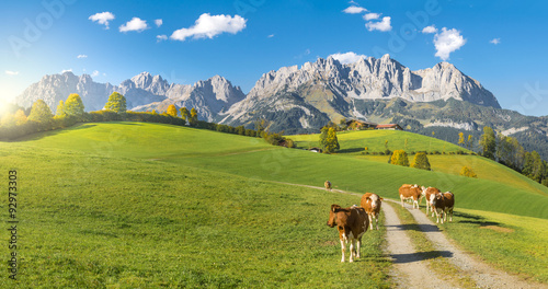 Door stickers Alps Herbststimmung Wilder Kaiser Tirol