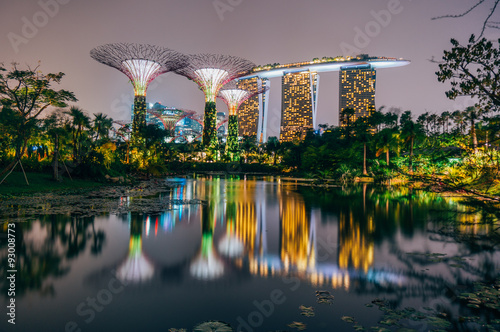 In de dag Singapore Supertree grove at garden by the bay in singapore and view on Marina bay Sands