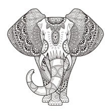 Graceful Elephant