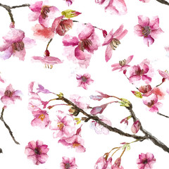 NaklejkaHand Drawn Cherry Blossoms seamless pattern.