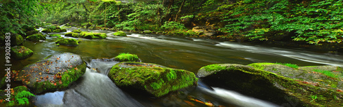 Aluminium Prints Forest river Waldfluss