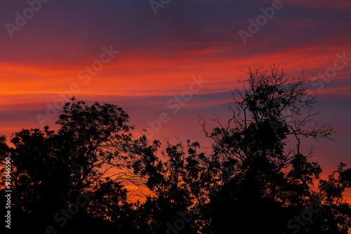 Foto op Plexiglas Crimson cloudy sky at sunset