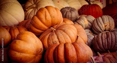 Fotografie, Obraz  Pumpkins #2
