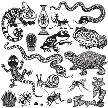 Set Wit Reptiles, Amphibians And Insects. Cartoon Animals Of Terrarium