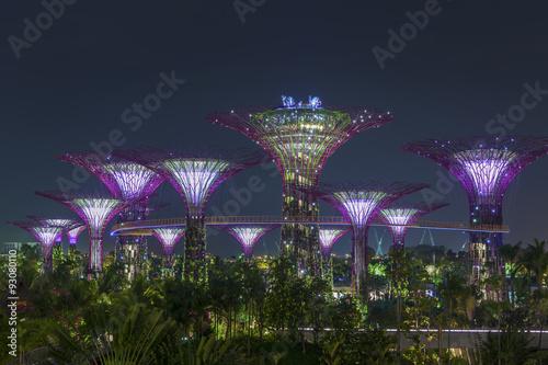 Plakat Ogrody przy Zatoce w Singapurze